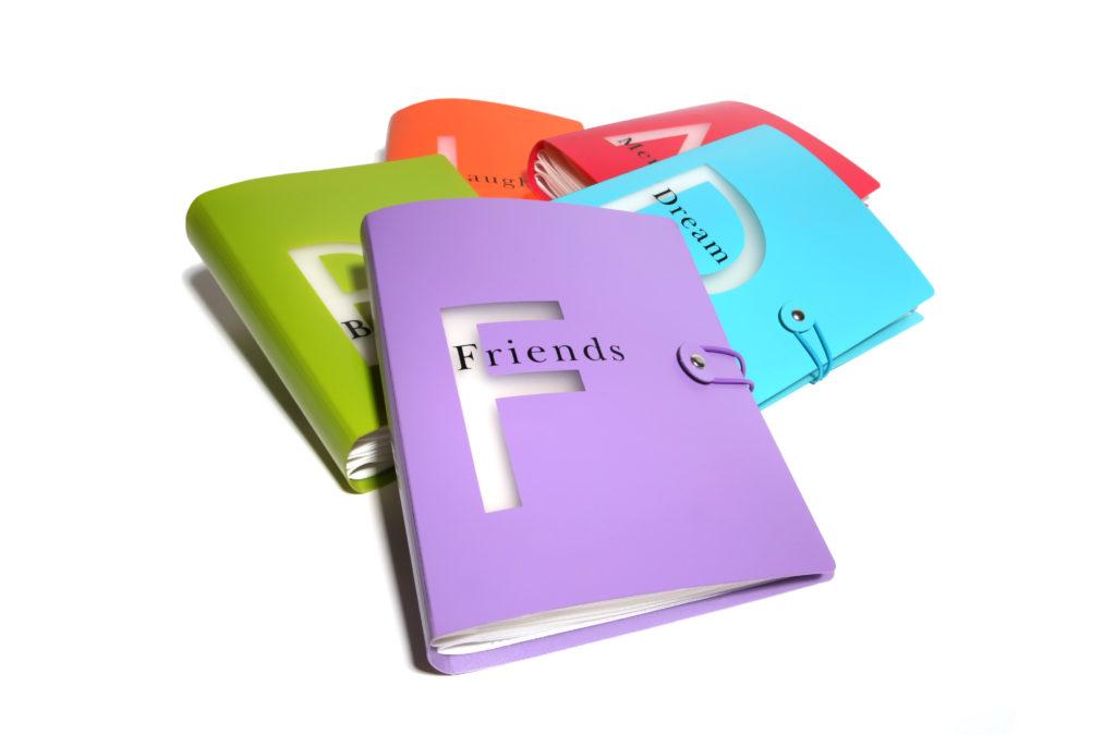 Deníky a jiné spisy