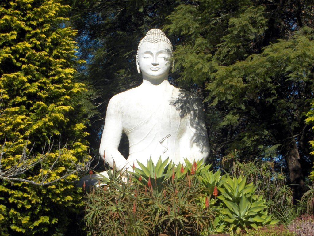 Buddhovo houští