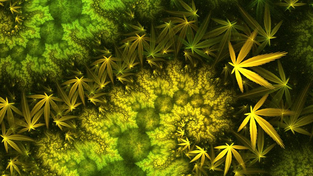 Halucinogenní tráva